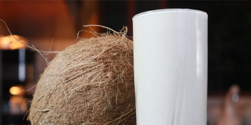 Iogurte Natural com Coco
